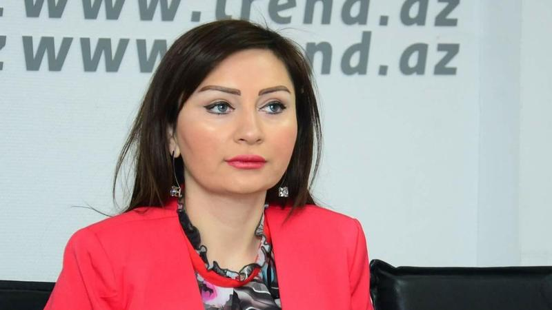 Politoloq: İlham Əliyevin fəaliyyəti böyük diplomatik qərarların qəbul olunmasına öz təsirini göstərdi