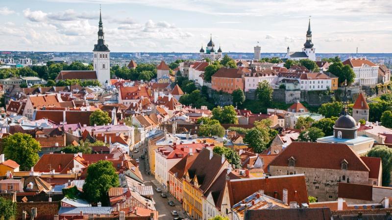 Estoniya bu sahədə ən yüksək inkişaf etmiş ölkə sayılır